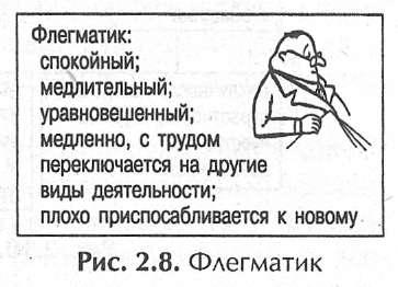 Эссе на тему флегматик 6389