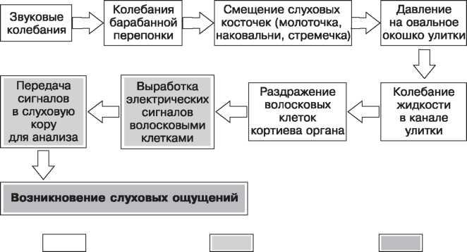 ОЩУЩЕНИЕ