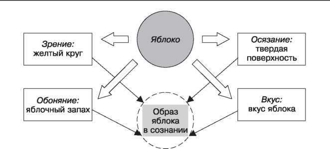Схема формирования психических