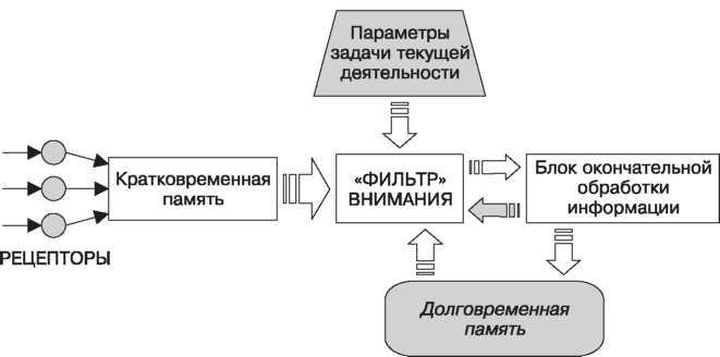 Схема селективной гипотезы